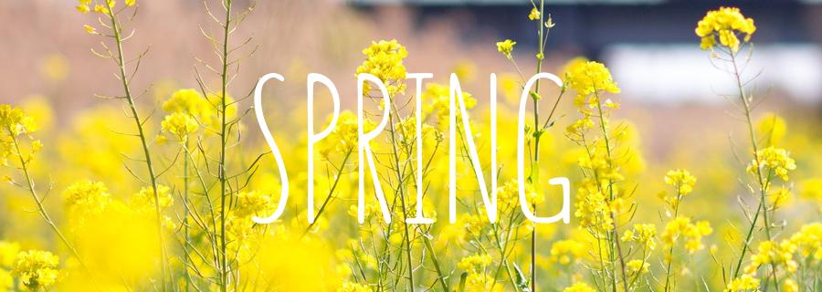 PickUpシーズン 3月 4月 春