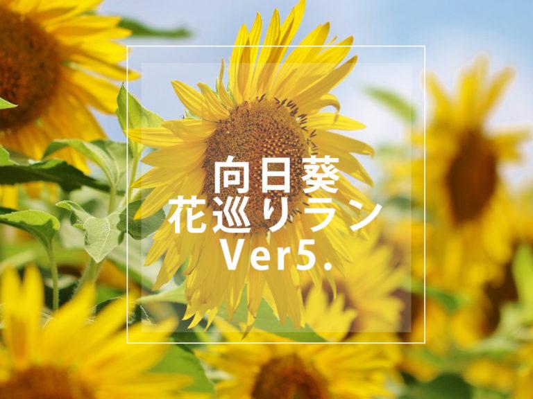 RUN+ ランプラス 夏 向日葵 ラン ひまわり 花巡りラン