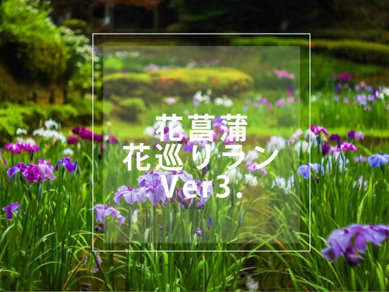 花巡り 3