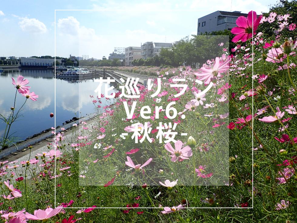 RUN+ 秋 ランニング 9月 10月 マラソン 楽しい 東京 都内 花 イベント ランプラス