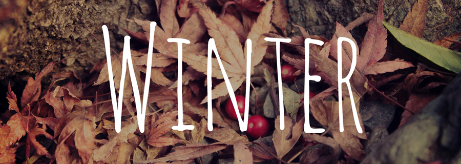 冬 秋 ランニング ラン ジョギング クリスマス 紅葉 イルミネーション  イルミラン 11月 12月 1月